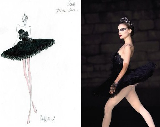 black swan white swan costume