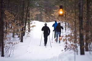 Cheboygan State Park to offer lantern-lit cross-country skiing and hiking on Jan. 26