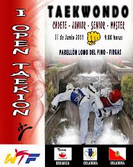 OPEN TAEKION 2011