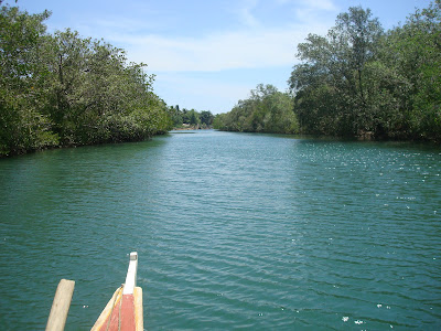 the river in Sipalay City
