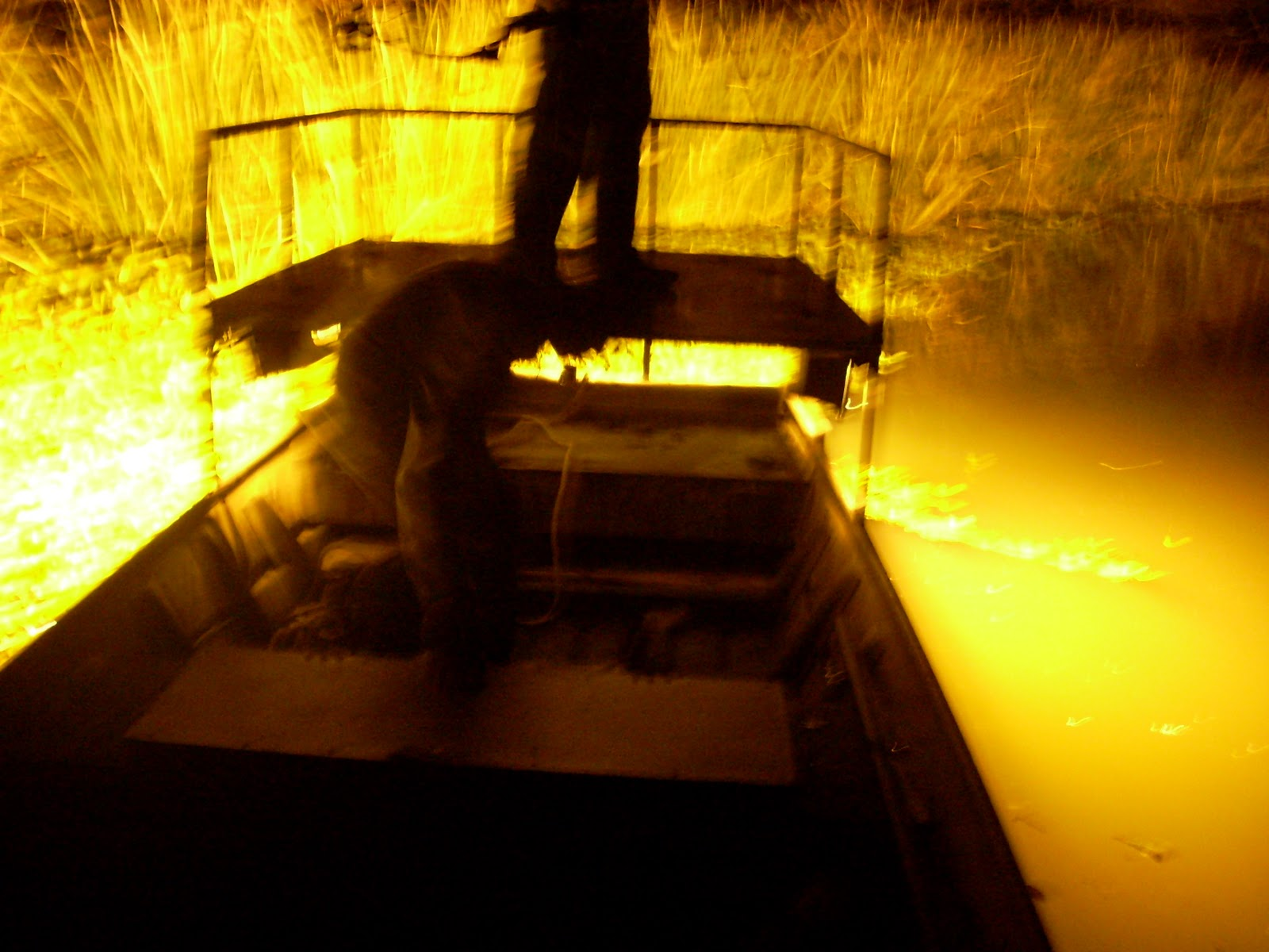 Bowfishing Lights at Night