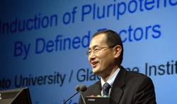 Image of stem cell researcher Shinya Yamanaka