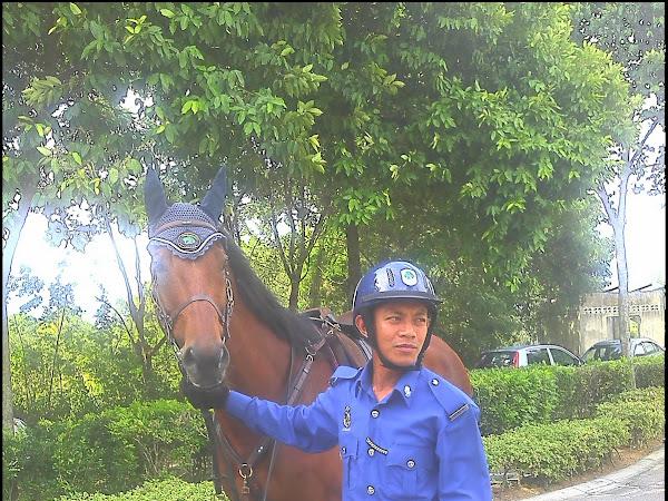 Cik Ngah ada kuda : Impian ku juga....