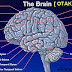BERBAGI TIPS: Cara Melatih Otak Agar Cerdas dan Kuat Ingatan
