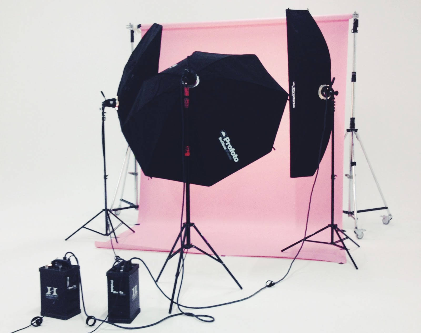 daisy kent photography pink background studio