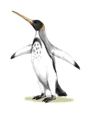sphenisciformes fosiles Icadyptes