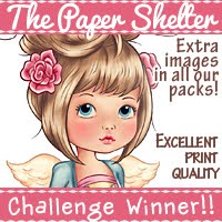 4-3-2020 The Paper Shelter