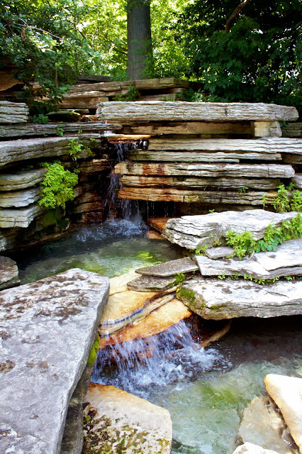 Alfred Caldwell Lily Pool, Chicago - Tammy Sue Allen Photography