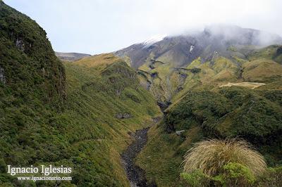 Viaje a Nueva Zelanda. 10 días en la Isla Norte
