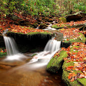gambar musim gugur