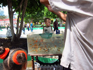 Santiago de Cuba fishies in the park