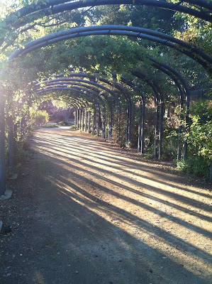 Descanso Garden - Path of Shadows by Maja Trochimczyk