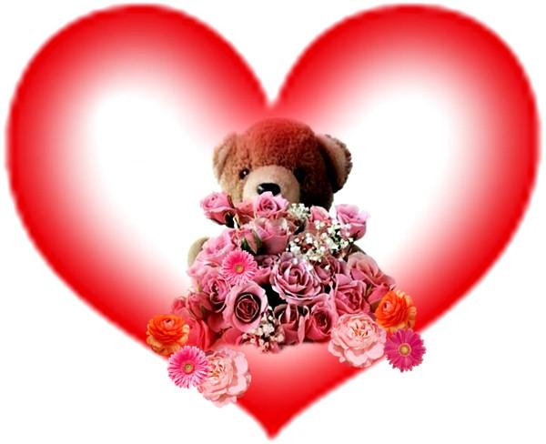 Imagenes de rosas con peluches - Peluches con foto ...