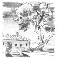 Bodega Casa del Rico Gorgocil Monastrell