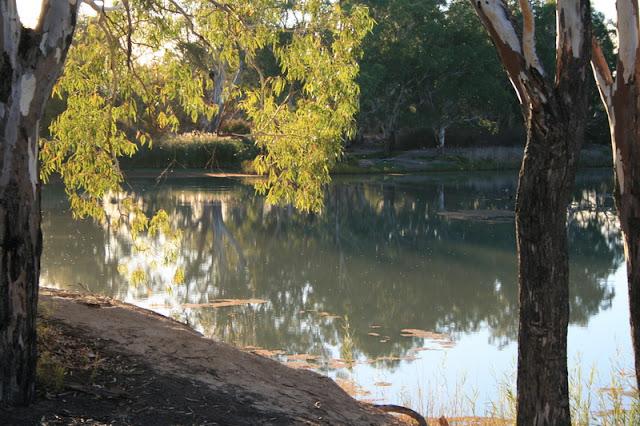 Murray River National Park South Australia - © CKoenig