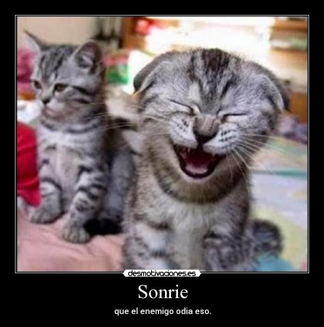 Sonrìe el enemigo odiaa eso !!!