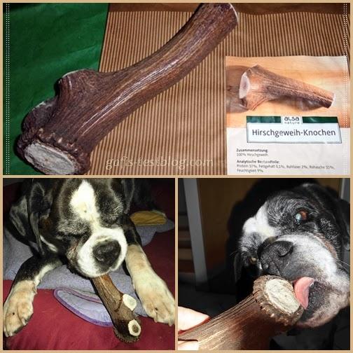 alsa-Hundewelt - Hirschgeweih-Kauknochen