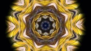 DVD диск Калейдоскоп в телевизоре Consciousness Connector Meditation Kaleido визуализатор