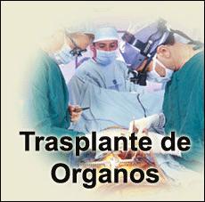 Trasplante de órganos 2014