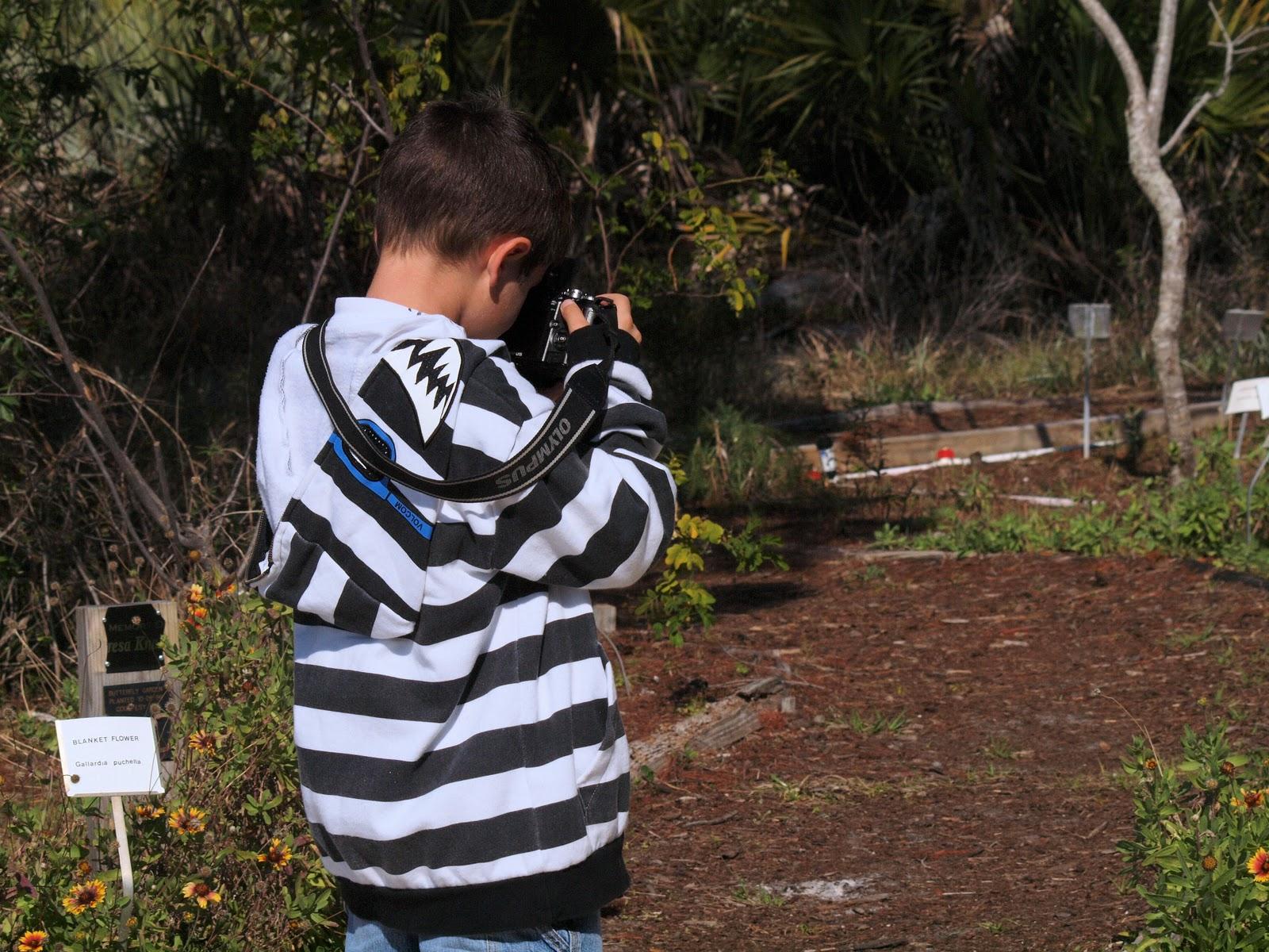 Postcards from Diane: A Child\'s-eye View: Turkey Creek Sanctuary