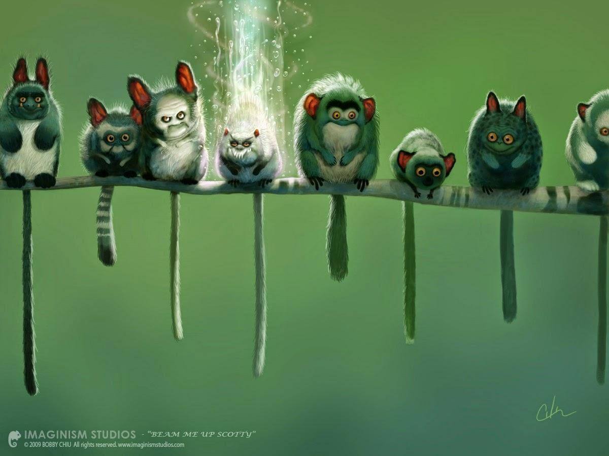 illustration de Bobby Chiu représentant plusieurs bestioles sur une branche dont un pas chanceux
