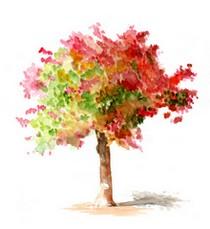 Árvore da Gratidão...