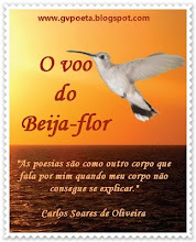 SELO DE DIVULGAO - LIVRO &#39;O VOO DO BEIJA-FLOR&#39;