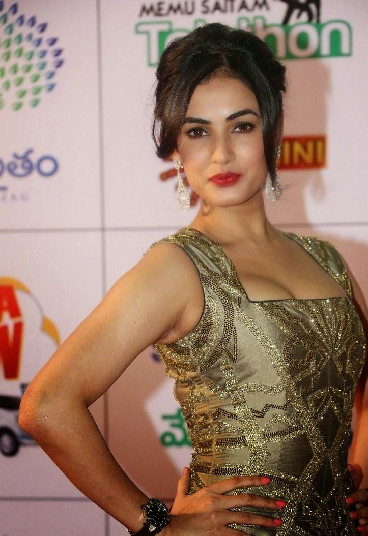 Sonal Chauhan's pout at a South Indian Movie Event