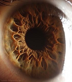 Fotos dos Olhos Humanos Como Você Nunca Viu ou Imaginou