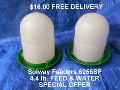 Solway Special Offer
