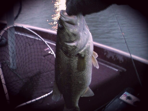 Illinois wisconsin fishing santa delivers a report from for Clinton lake fishing report