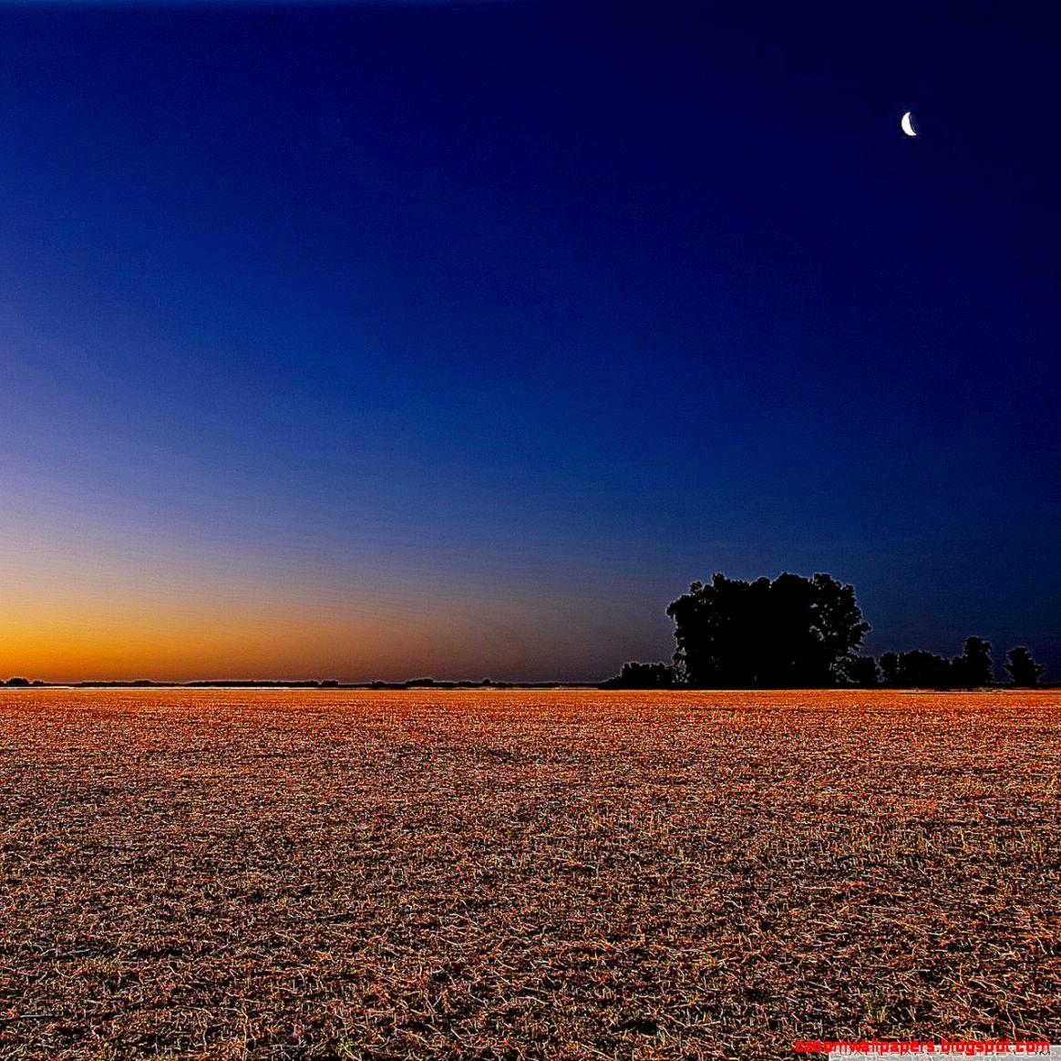 Night Landscape HD desktop wallpaper  Widescreen  High