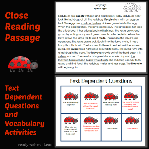 Eric Carle Book Activities, Insect Unit, Close Reading Passage