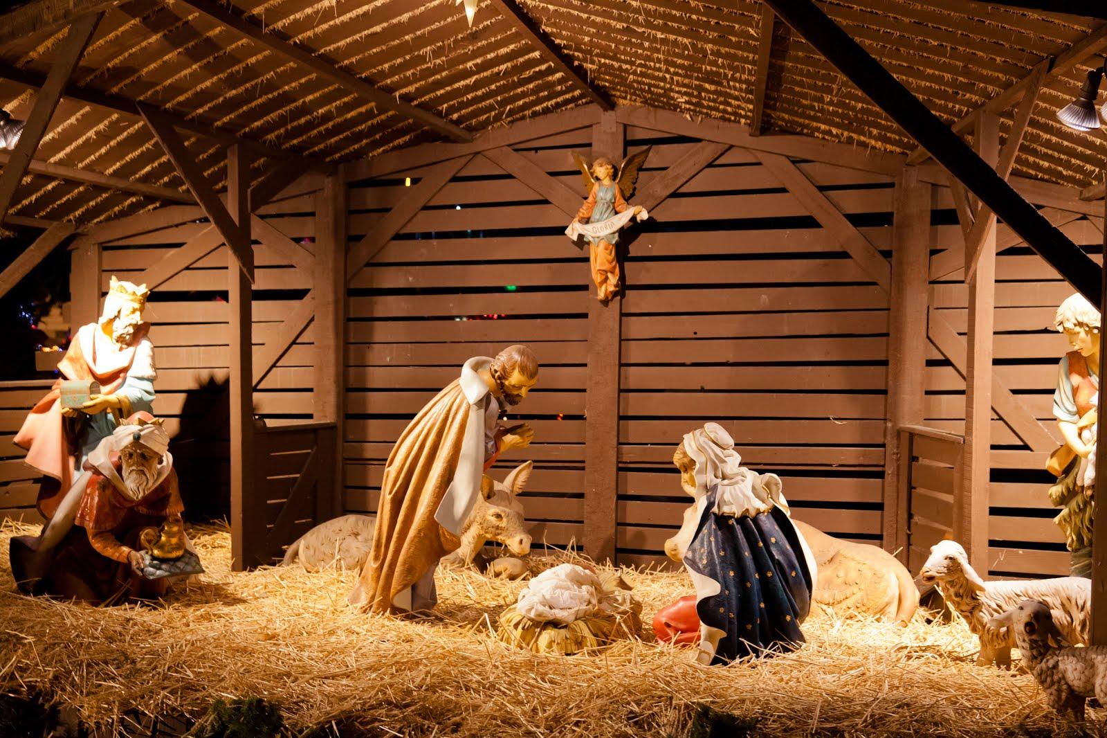 b57cfcd858a BANCO DE IMÁGENES  Nacimiento del Niño Jesús en el pesebre ...