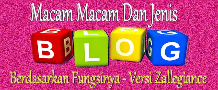 Macam dan Jenis Blog Berdasarkan Fungsinya