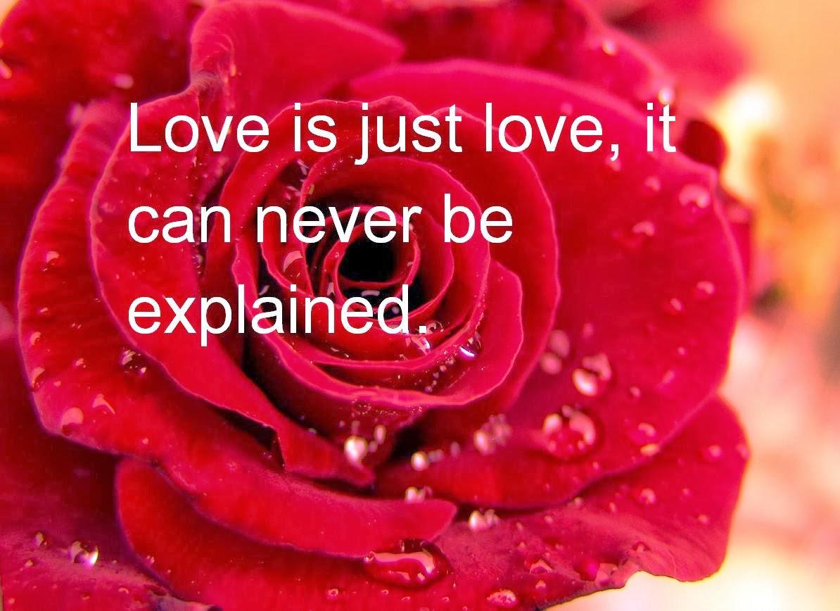 Funny valentine quotes for him valentine jinni m4hsunfo