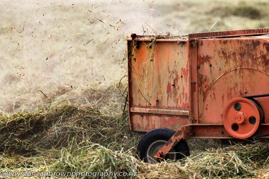 Haymaking with vintage machinery photograph