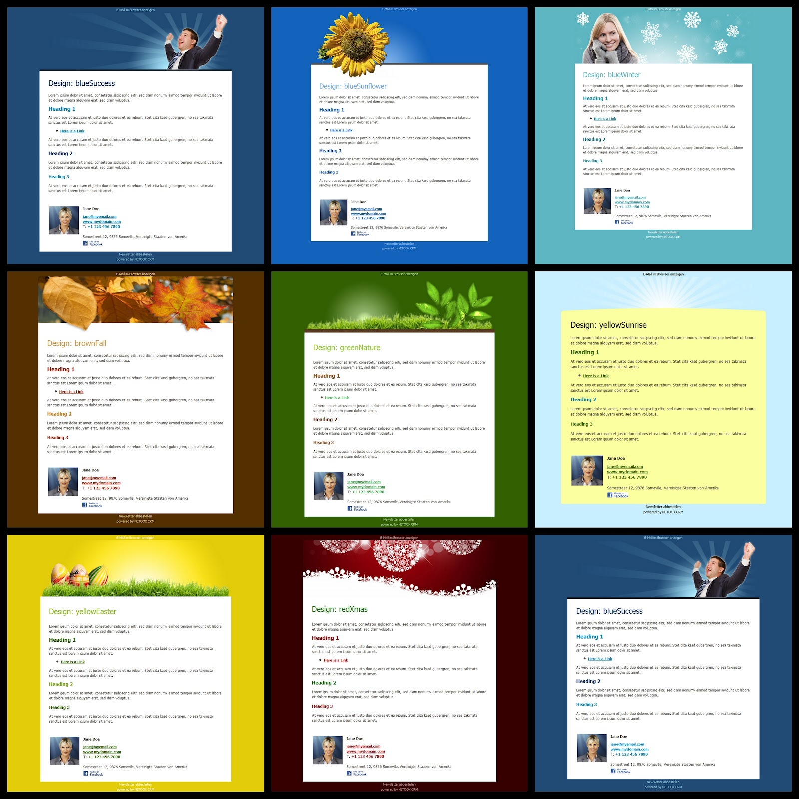 Newsletter Tool Updated – netbiz global ltd