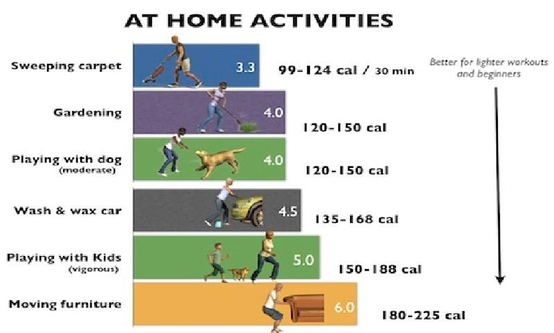 compendium of physical activities tracking guide