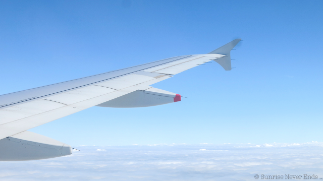 avion,biarritz,vu du ciel