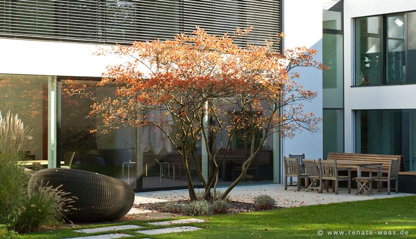 Gartenblog Zu Gartenplanung, Gartendesign Und Gartengestaltung ... Gartenanlage Modern Bilder