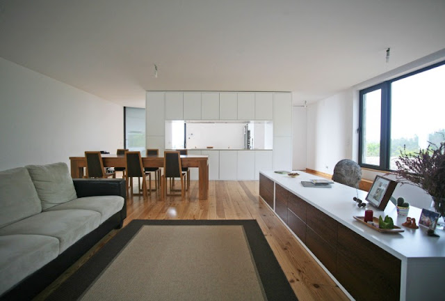 blog.oanasinga.com-interior-design-photos-contemporary-minimalist-open-space-2