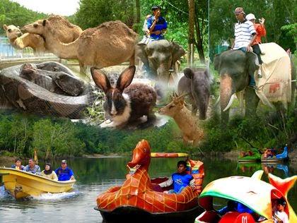 wisata danau kandi sawahlunto