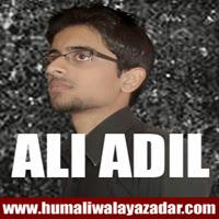 http://ishqehaider.blogspot.com/2013/11/ali-adil-nohay-2014.html
