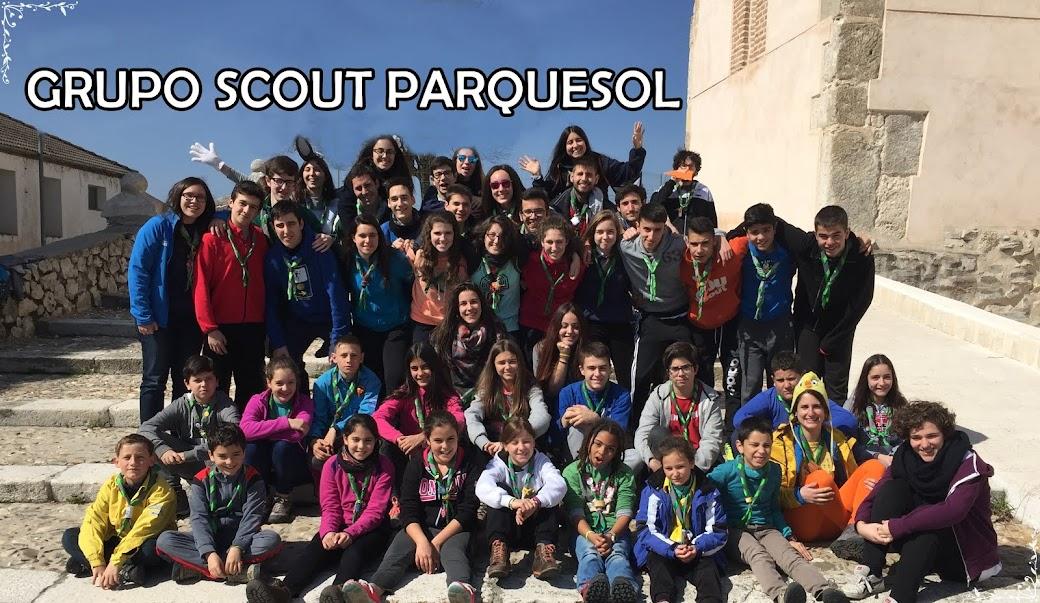 Grupo Scout PARQUESOL MSC
