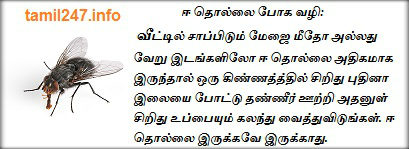 Ee thollai poga eliya vazhi, ஈ தொல்லை போக வழி, Tips in tamil, Kurippugal, Veettu kurippugal,