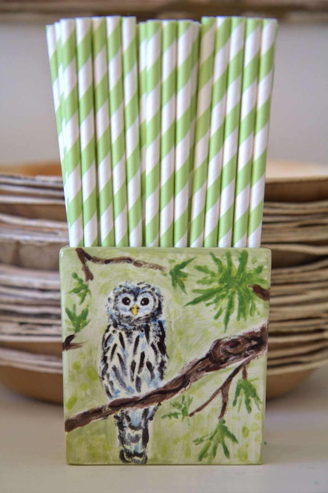 Woodland Party; painted owl on ceramic, green paper straws, and wood plates: Nora's Nest