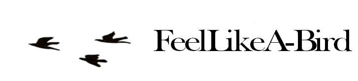 Feellikea-bird