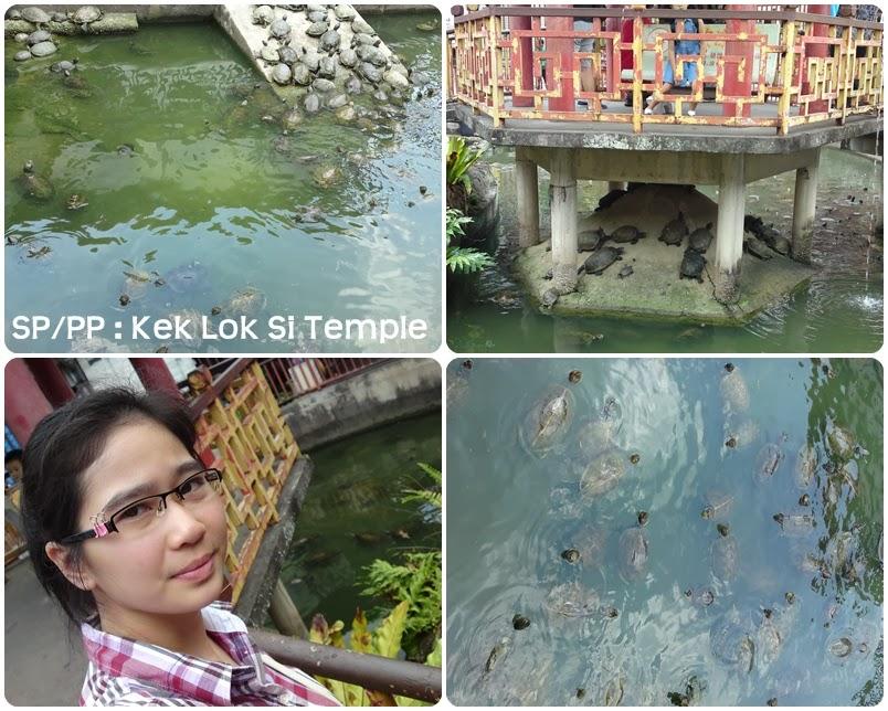 mandi swimming pool kat temple