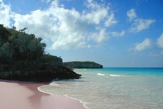 pink sands beach,bahama